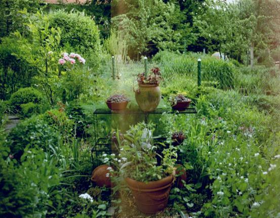 fotogalerie unser privatgarten im berblick garten und. Black Bedroom Furniture Sets. Home Design Ideas