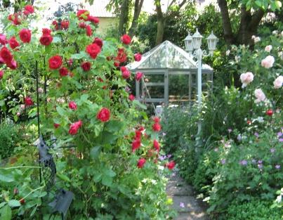 Fotogalerie Impressionen Aus Unserem Privatgarten Rosenfotos